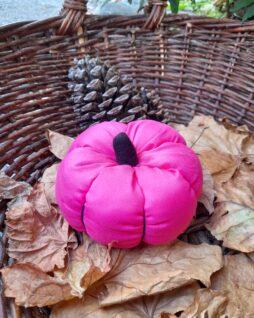 Citrouille décorative – Rose et noire L